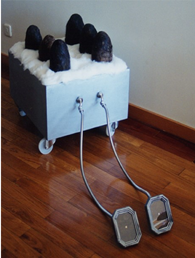 O patinho feio, 1996
